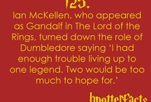 What the Hell is a Hufflepuff / It's Harry Freaking Potter, and it's probably the best damn series on the planet / by Elizabeth Young