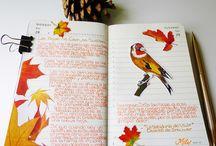 Llibreta de notes