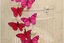 buterrfly