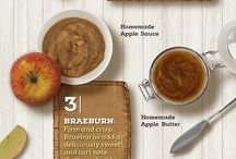 Fall Flavor Fest / Our favorite fall recipes and food picks from apples, cinnamon, pecan, pumpkin and then some!