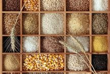 GREAT GRAINS. / Grains are beyond great. Nutrient dense, and perfect for those with food allergies.