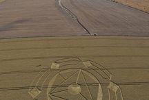 crop circle 08