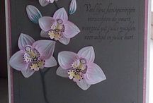 Stampin' UP! - Orchideenzweig, Climbing Orchid