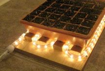 Garden Ideas / by My Craft Basket