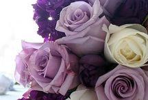 Virágok / Szeretem a virágokat.