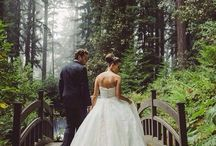 Wedding pictures / by Polina Schroeder