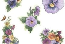 dibujos / flores,paisajes....