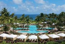 Treasured Travel Memory / Ritz-Carlton & Conde Nast Traveler Hawaii Give-Away / by Erikka Claerhout