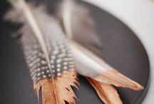 Everything's copper / Seit letztem Jahr geht nichts mehr ohne Kupfer -  Egal ob im Bereich Interieur, Fashion oder Stationery. Hier findet ihr ein paar tolle Ideen und Inspirationen rund um die Trendfarbe und wie ihr geschickt ein paar Highlights damitsetzt.