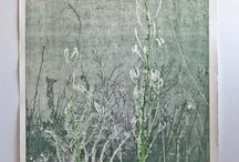Nature prints / Prints made with plants on beautiful etching paper