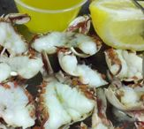 Cooking - Seafood
