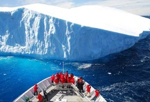 Antarctica Travel with Kids / Travel to the south pole of the earth with your kids and discover the home of large permanent glaciers.