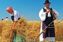 Magyar népszokások és hagyományok