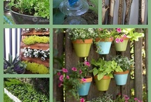 Garden Ideas / by Christine Jenot