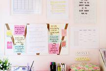 Organización y estudio