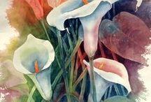 Calle, gigli e tulipani.