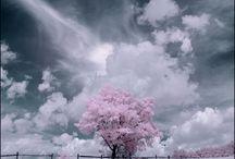 Favorite Places & Spaces / by Junichi Adachi