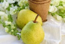 Pears / Growing pears, pear recipes, styling pears, poached pears,