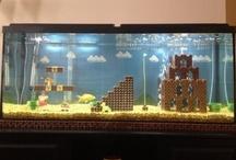 Terrarium aquariums