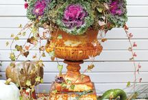 Fall Containers / Ideas for Fall containers