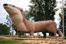 Minnesota Roadside Attractions / World's largest things and other roadside attractions in Minnesota to see on your next road trip.
