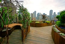 living roofs / gardens in unique places