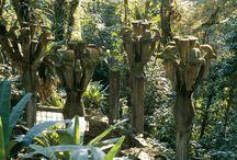 Whacky Gardens