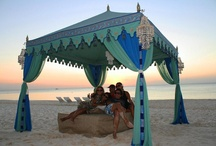 Luxury tents, wedding settings & party events / The most beautiful party tents and party settings.