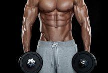 Muscle Program