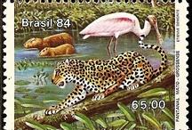 Habitat de animales
