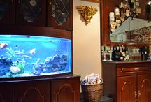 Aquarium for Educational Centres / Curtails disruptive behaviours Increases relaxation and alertness Improves well being