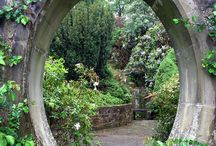 Magiczne ogrody...Magic gardens