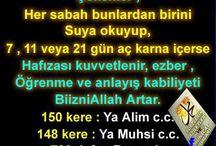 Din bilgisi