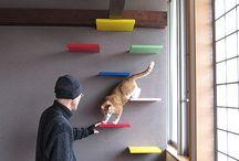 Katzen Möbel