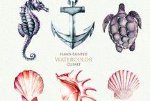 Mermaids Sirènes