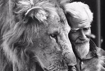 George Adamson and his loves