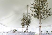 Realistic wedding