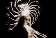 Anatomical movement