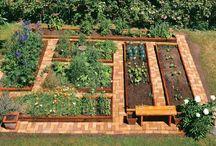 grønnsaker med senger