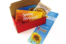 Mailers / Examples of mailers created for our clients.