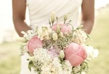 Hayalimde ki düğün