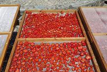 Flavours of Santorini
