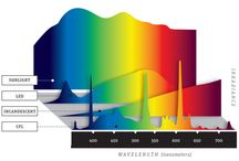 Light spectrum ,h0