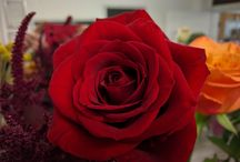 Valentine's Day At Funky Flowers / We have the most amazing roses, ideas and gifts....Call to pre order your flowers by calling us on 0118 979 6019