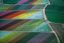 Colours / by Marjolijn Kerkhof