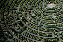 El jardín de senderos que se bifurcan