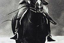 Magnificent Rider
