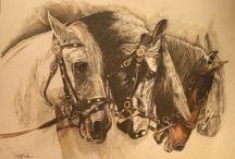 Grâce  & puissance :le cheval