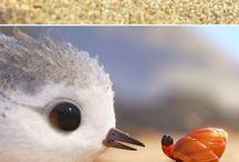 ptačí mandala