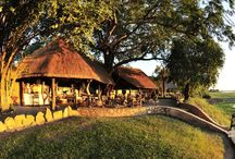 Bush Experience Safari / Combine a walking safari with game drives and explore the animal rich South Luangwa National Park in Zambia.
